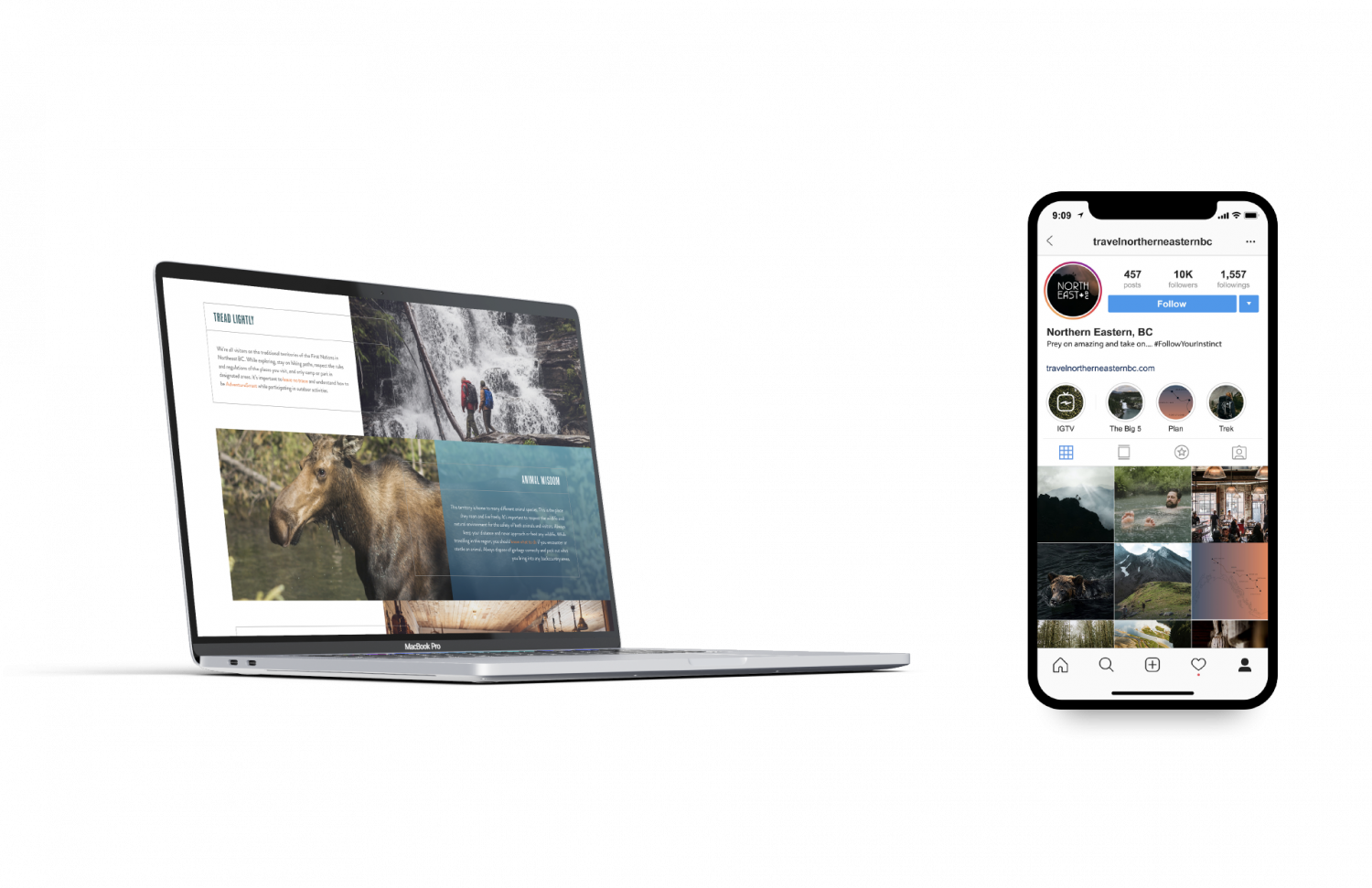 Laptop mockup of website and iPhone mockup of Instagram feed