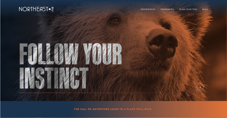 NEBC Website homepage