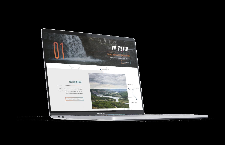 "Mockup of NEBC website - ""The Big Five"""
