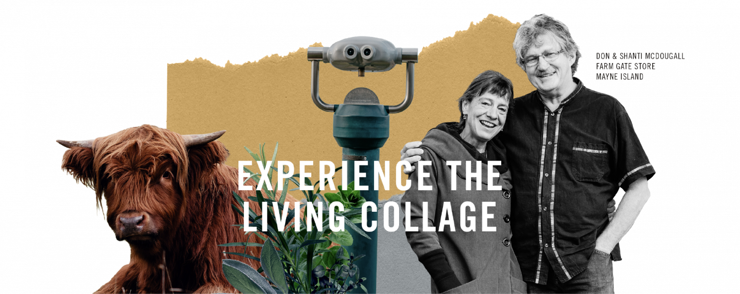 """""""Experience the Living Collage"""" - Don & Shanti McDougall from Mayne Island: Farm Gate Store"""